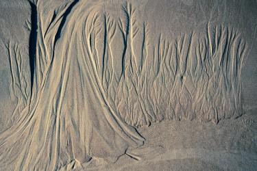 Sand Trees
