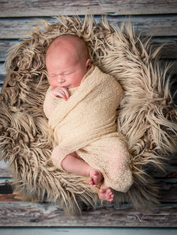 newborn baby in basket with fur