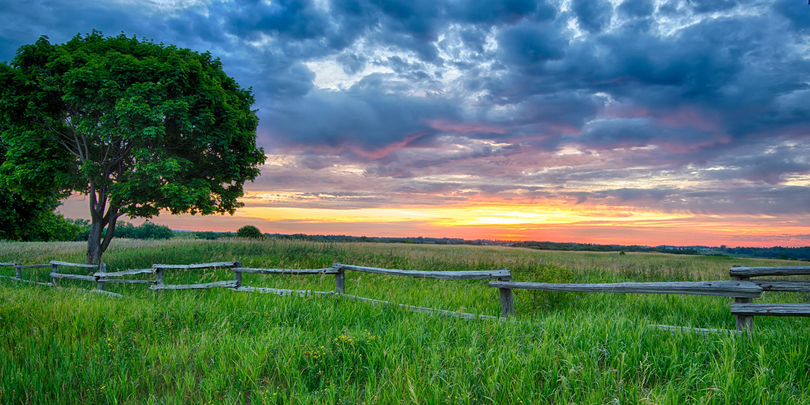 sunrise tree and fence rural ontario landscape photography