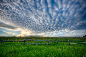 lush green grass and an old wooden fence under a dramatic sky