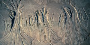 close up of rill erosion trees in sand