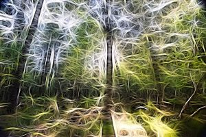 impressionist picture of trees