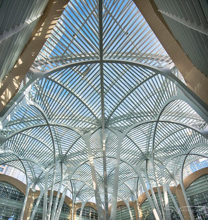 Calatrava Toronto