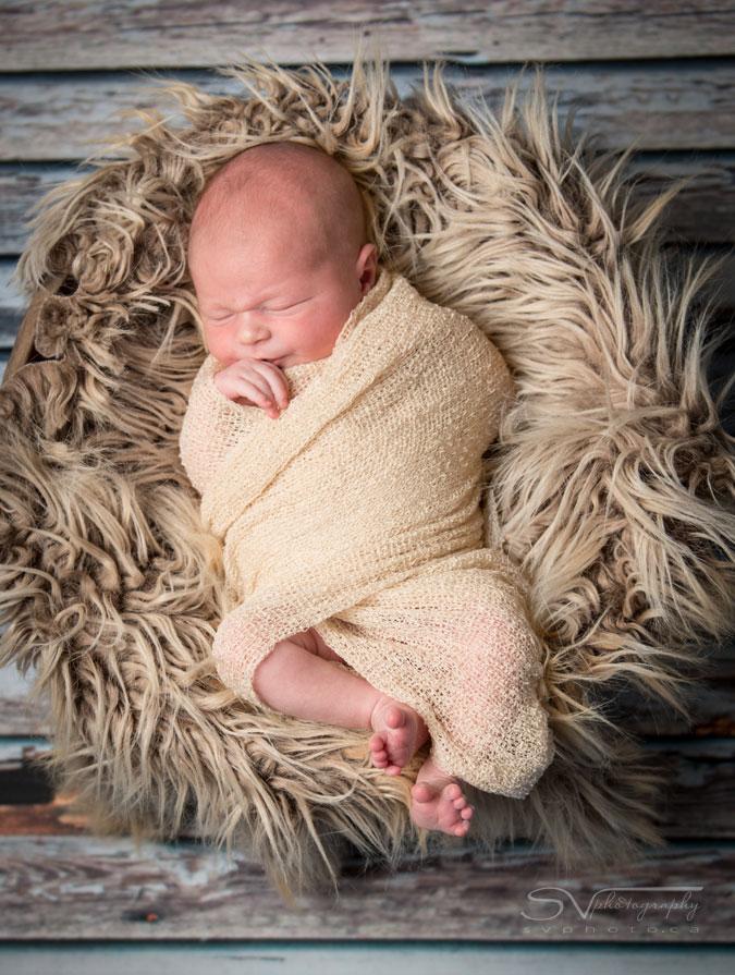 newborn baby in basket with fur