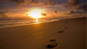 foot prints in sandy beach at sunrise