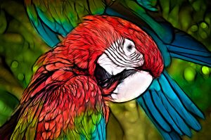 impressionist picture of parrot