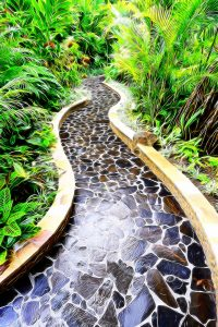impressionist picture of tropical path